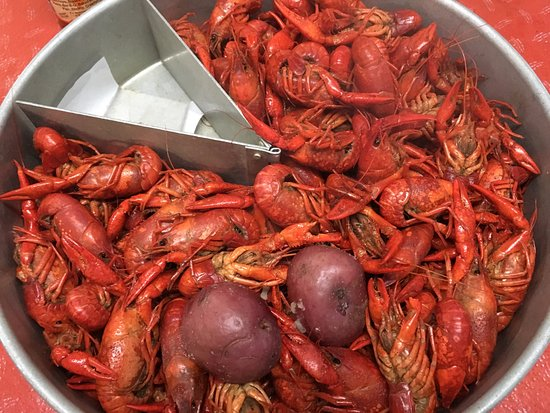 ‪‪Abbeville‬, لويزيانا: Boiled crawfish‬