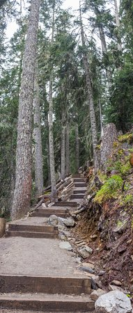 Pemberton, Canada: Path at the lower part of the footpath