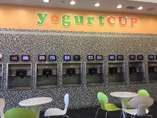 Wylie, TX: Yogurt Cup