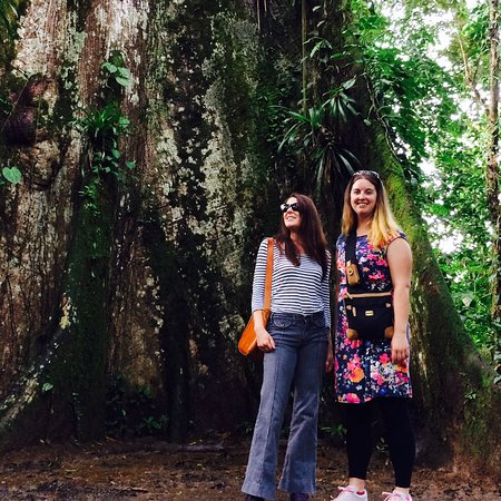 Tenorio Volcano National Park, Costa Rica: viajeros