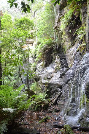 Bundanoon, Australia: walking down to the falls at the bottom can be wet on the feet , have good closed in shoes