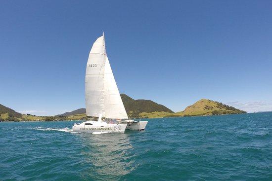 Paihia, Nya Zeeland: Kopiko, Tennant Turissimo 10