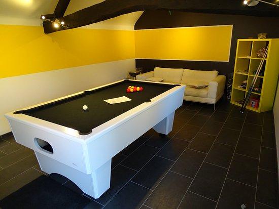 Ellezelles, Bélgica: La cerise sur le gâteaux !!! la salle de détente avec billard une merveille