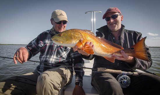 Edgewater, Floride : Red Fish
