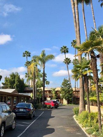Chino, Калифорния: photo2.jpg