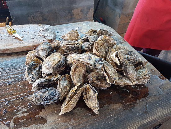 Oysters R Us: A pile of oysters ready to be shucked