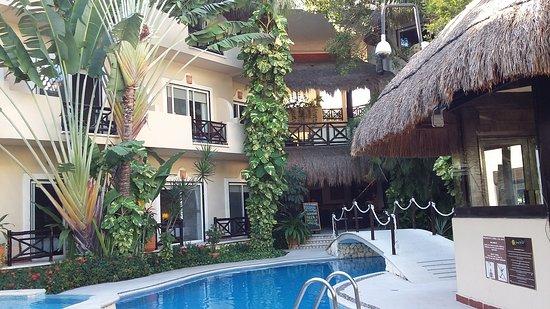 Hotel Riviera del Sol: 20170131_154855_large.jpg