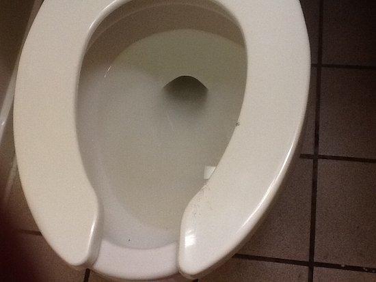 แคลิฟอร์เนีย, แมรี่แลนด์: This was dirty toilet on checking in burnt seat cut up sharp seat went to desk asap
