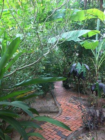Botanica Guest House: photo0.jpg