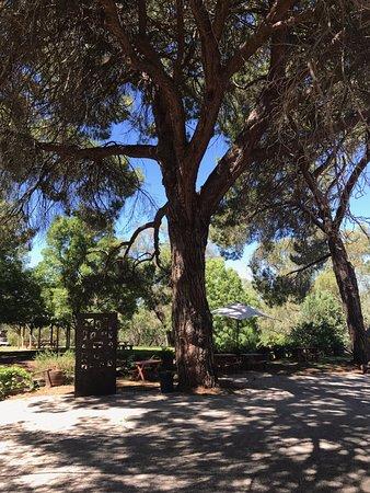Wahgunyah, Australia: Picnic Spot