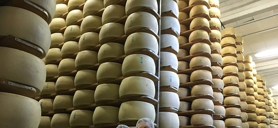 Italian Days Food Experience: Millions of dollars with of Parmigiano Reggiano