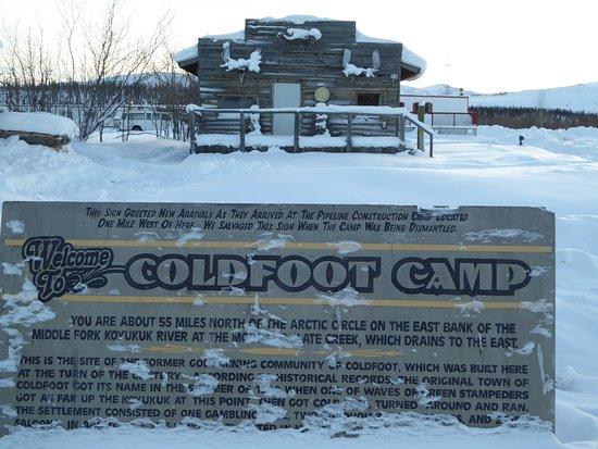 Northern Alaska Tour Company: Downtown Coldfoot, Alaska