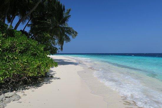 Fihalhohi Island Resort: photo2.jpg