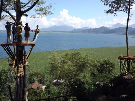 Urongo Tree House: Soon they will open a flying fox down to the village.