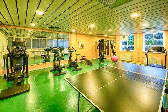 Leonardo Hotel Hamburg-Stillhorn: Fitness Room