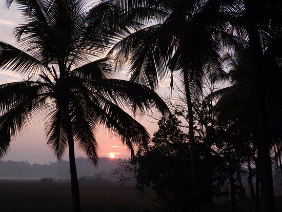 Pomburpa, India: Sunrise over the Backyard