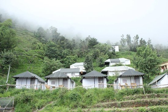 Pangot, India: Beautiful Village / Jungle Campsite