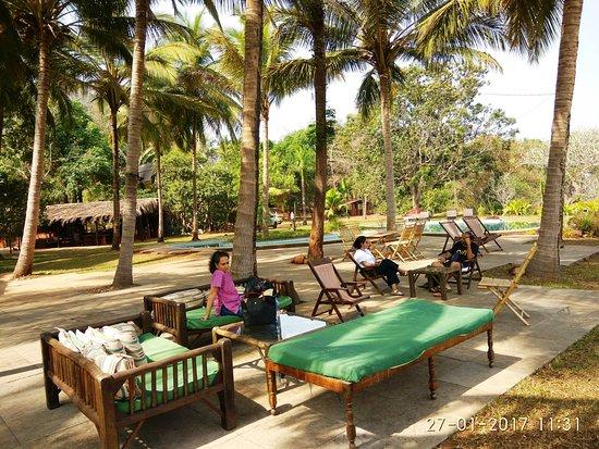 Pomburpa, India: Lazing in the Backyard!