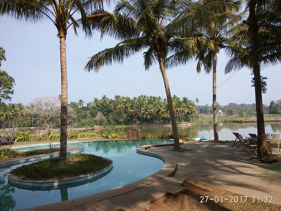 Pomburpa, India: The Pool