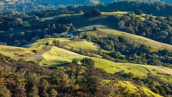 Конкорд, Калифорния: Hills of Mt. Diablo