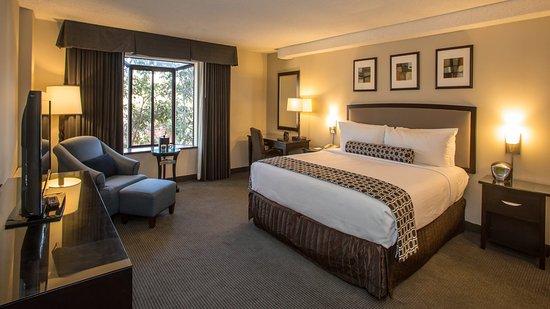 Concord, CA: Executive King Room