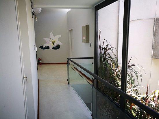 Canas Suites Urbanas