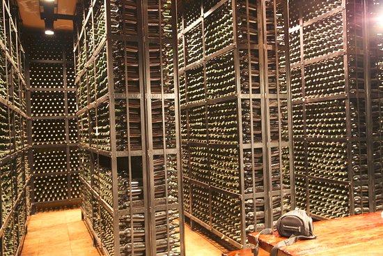 เมือง Agrelo, อาร์เจนตินา: Wine Wine and more Wine