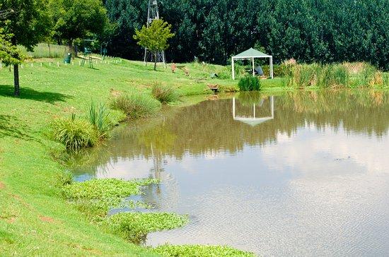 Brookwood Estate Trout Farm