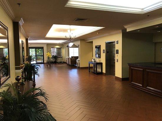 Staybridge Suites Orlando Airport South: photo7.jpg