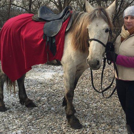 Курочка Ряба: Конные прогулки в Курочке Рябе