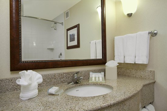 Hilton Garden Inn Columbus-University Area: Standard Bathroom