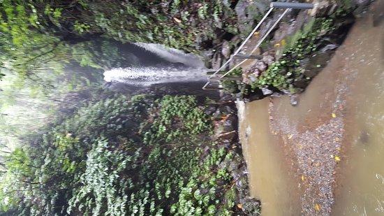Gitgit Waterfall: 20161213_152443_large.jpg