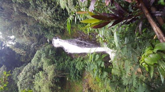 Gitgit Waterfall: 20161213_155604_large.jpg