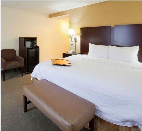 Hampton Inn & Suites Lino Lakes: King Studio