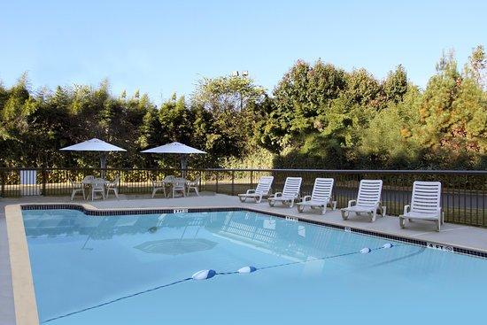 Hampton Inn Madison : Pool
