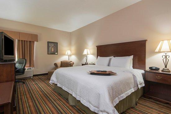 Hampton Inn Danville: King Room