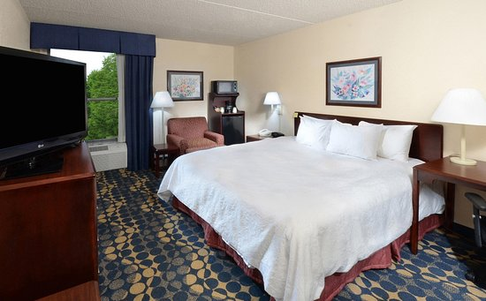 Archdale, Carolina do Norte: King Accessible Guestroom