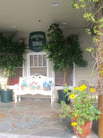 Cambria Pines Lodge: photo2.jpg