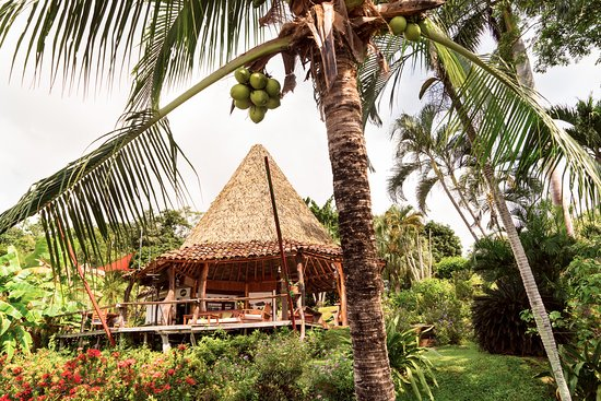 Cristal Azul: Tropical Costa Rican Rancho for dining, lounging and play!
