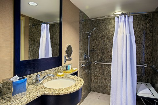 Glen Ellyn, IL: King Superior Room ADA Bathroom