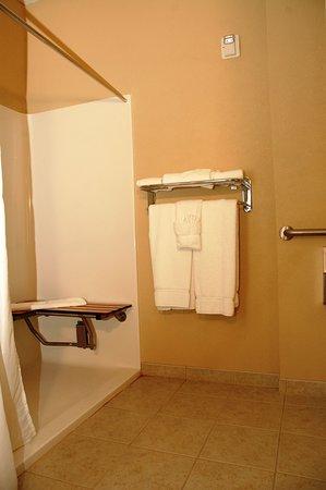 Delmar, MD: Accessible large bathroom