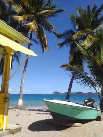 Iles des Saintes, Guadeloupe: La Belle Etoile sur la plage de la Grande Ance, Terre de Bas, Les Saintes