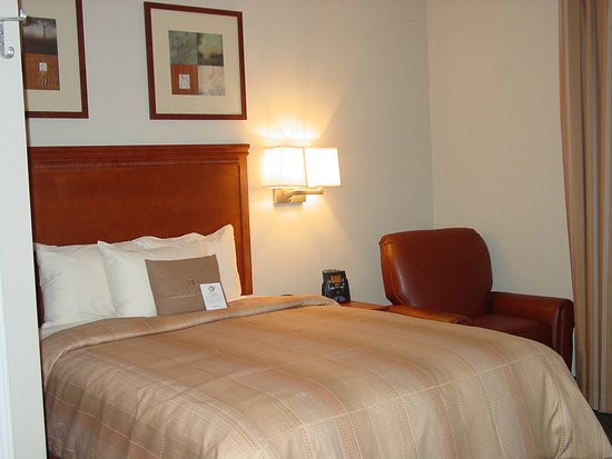 Candlewood Suites DFW South: Guest Room
