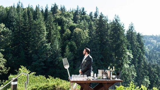 Salish Lodge & Spa: Stunning Tree View