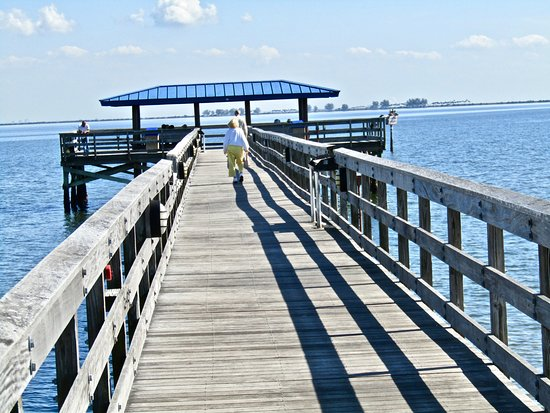View of tampa picture of safety harbor marina park and for Tampa fishing piers