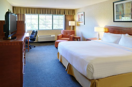 Holiday Inn Express Kelowna: 1 King Deluxe