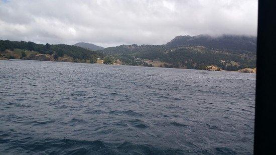 Vista del lago Icalma desde la embarcación
