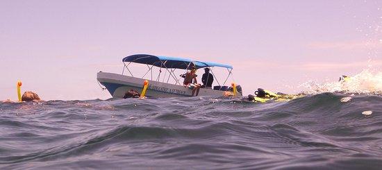 Punta Gorda, Belize: TIDE snorkel