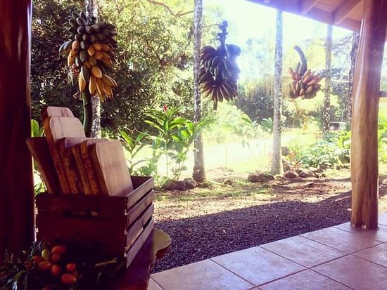 Haiku, Hawaï: Sustainably harvested mango cutting boards available