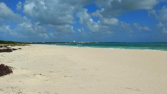 Cove Bay beach